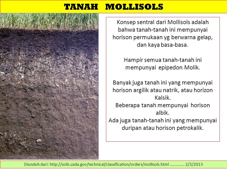TANAH MOLLISOLS Konsep sentral dari Mollisols adalah bahwa tanah-tanah ini mempunyai horison permukaan yg berwarna gelap, dan kaya basa-basa.