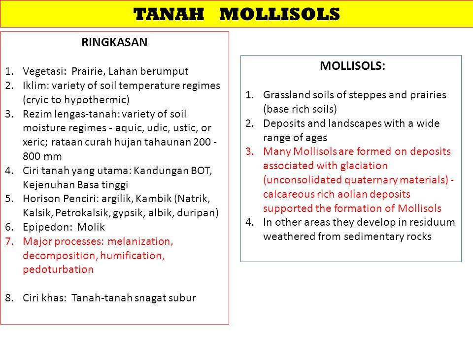 TANAH MOLLISOLS RINGKASAN MOLLISOLS: Vegetasi: Prairie, Lahan berumput