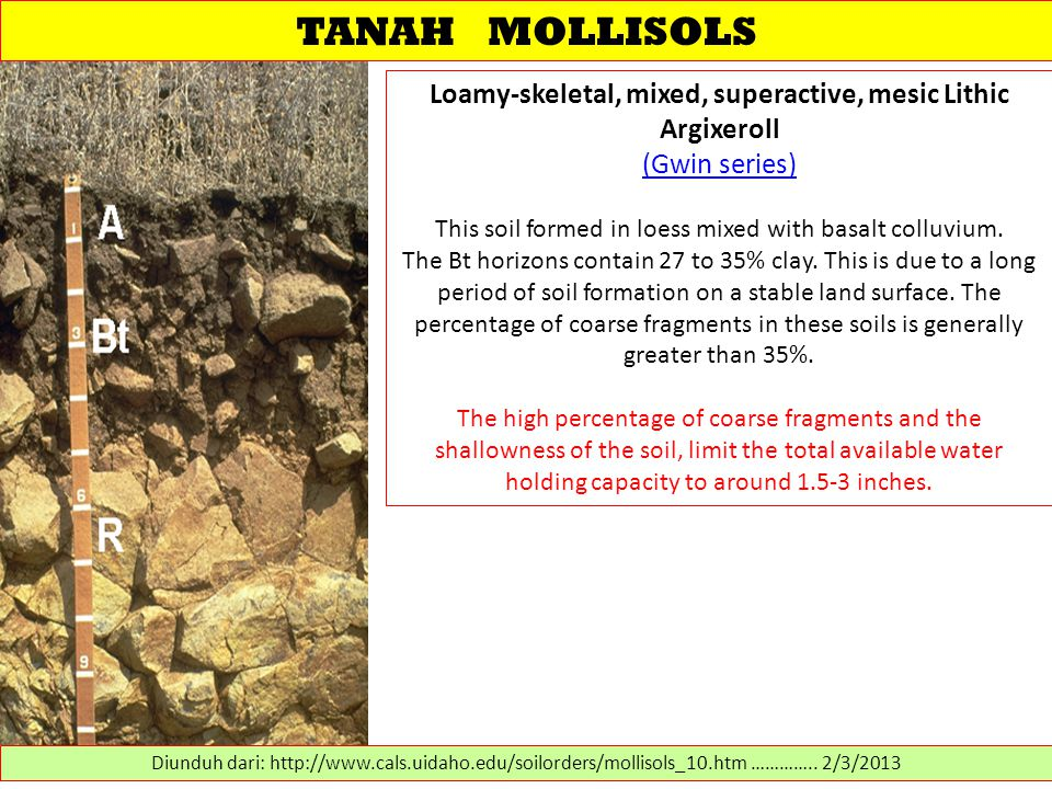 TANAH MOLLISOLS Loamy-skeletal, mixed, superactive, mesic Lithic Argixeroll (Gwin series) This soil formed in loess mixed with basalt colluvium.