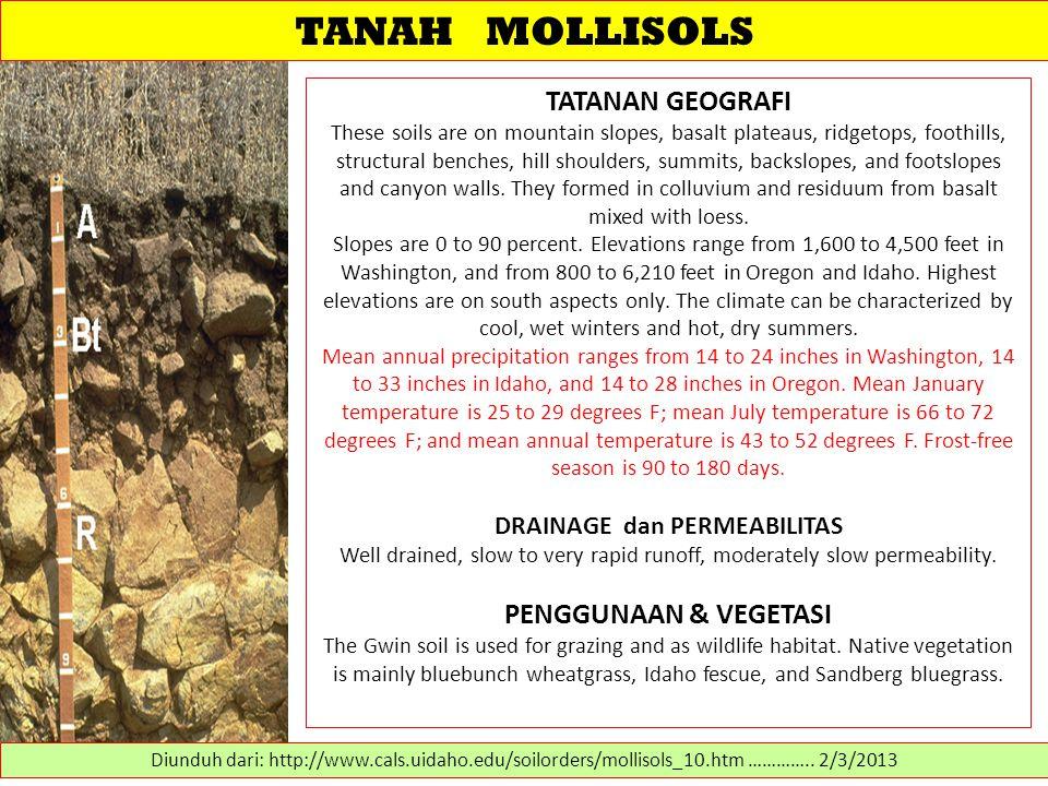 TANAH MOLLISOLS TATANAN GEOGRAFI PENGGUNAAN & VEGETASI