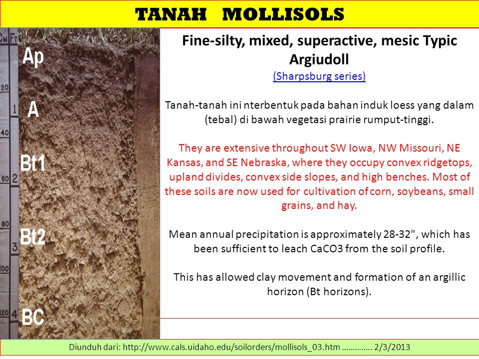 TANAH MOLLISOLS Fine-silty, mixed, superactive, mesic Typic Argiudoll (Sharpsburg series)