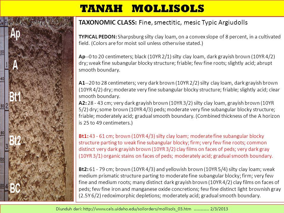 TANAH MOLLISOLS TAXONOMIC CLASS: Fine, smectitic, mesic Typic Argiudolls.