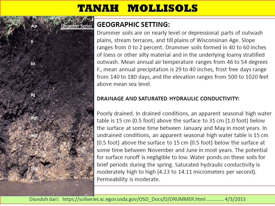 TANAH MOLLISOLS GEOGRAPHIC SETTING: