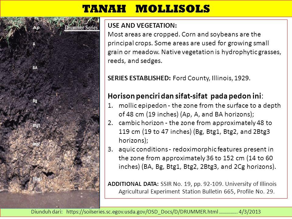 TANAH MOLLISOLS Horison penciri dan sifat-sifat pada pedon ini: