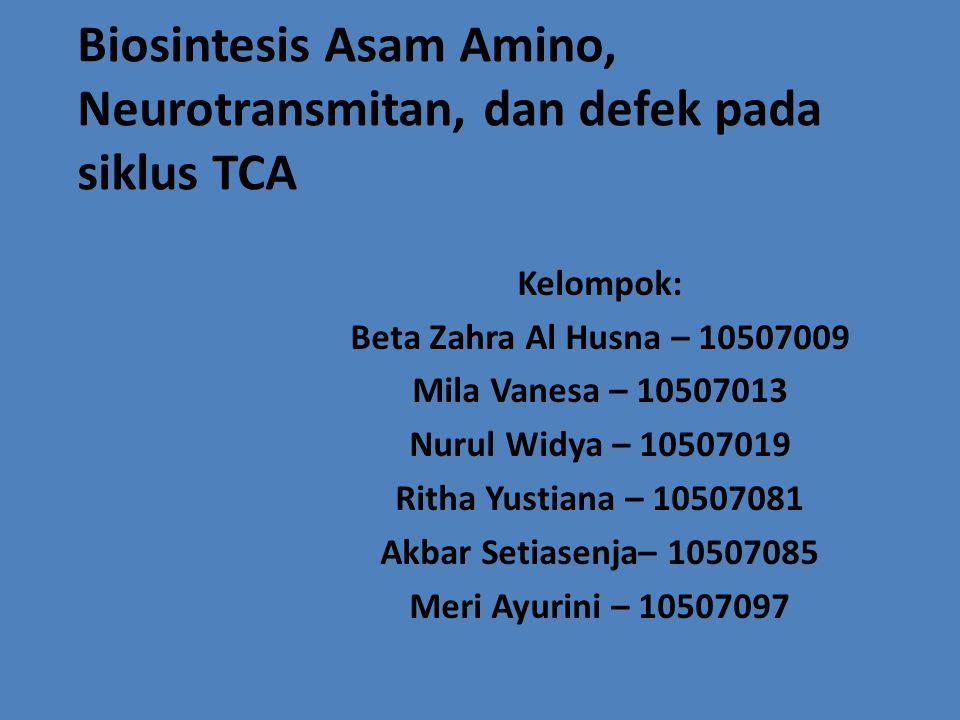 Biosintesis Asam Amino, Neurotransmitan, dan defek pada siklus TCA