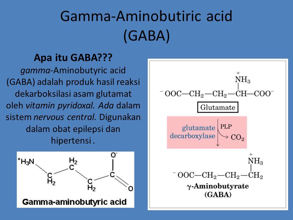 Gamma-Aminobutiric acid (GABA)