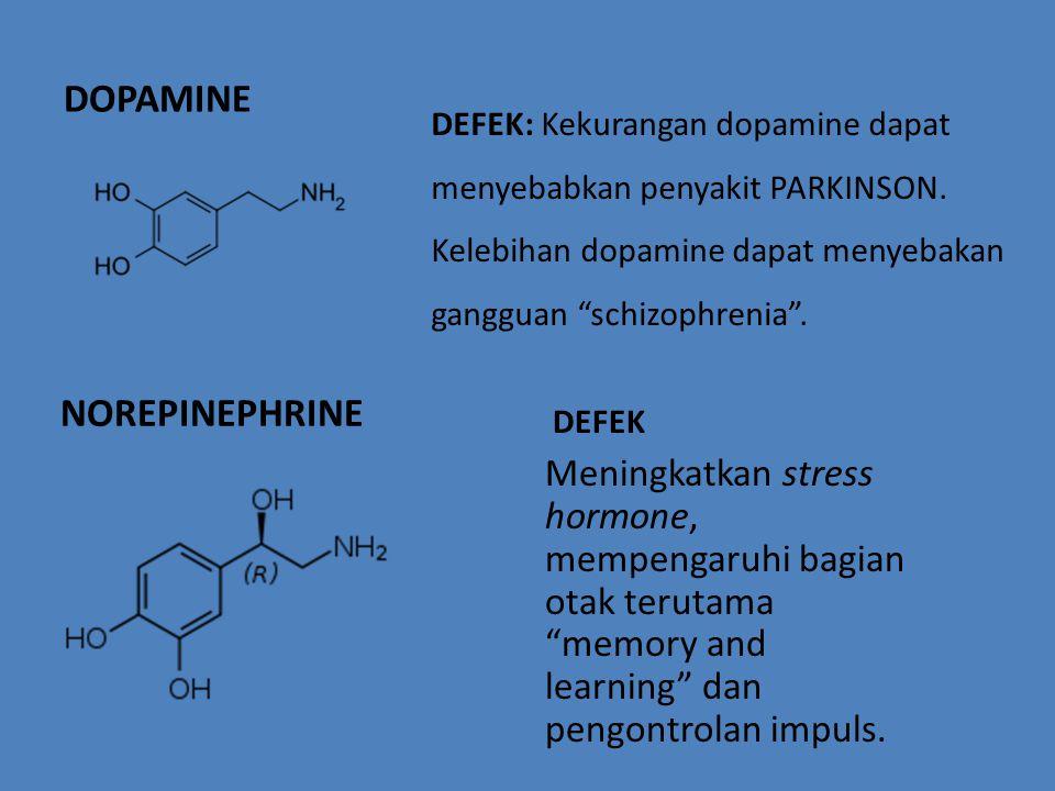 DOPAMINE NOREPINEPHRINE DEFEK