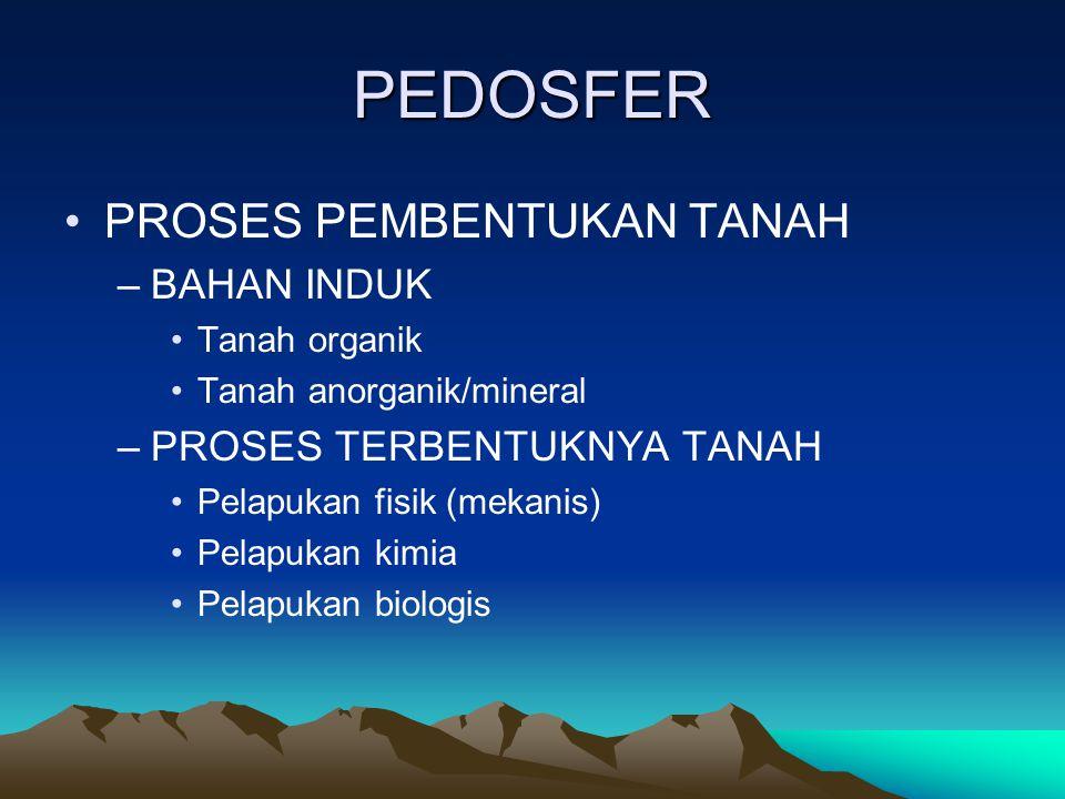 PEDOSFER PROSES PEMBENTUKAN TANAH BAHAN INDUK