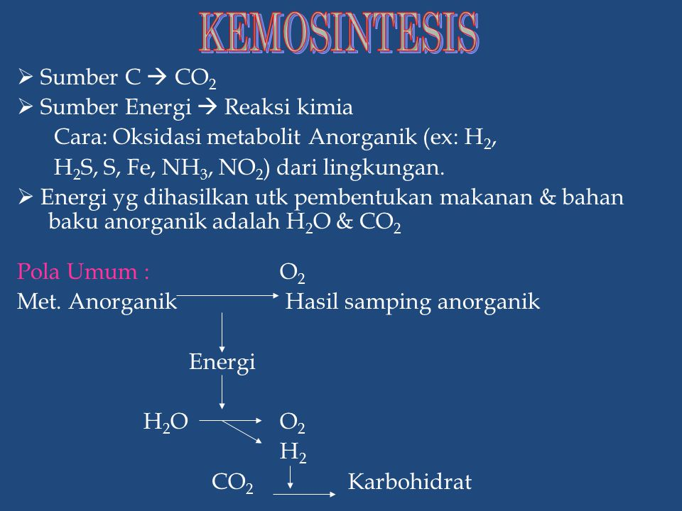 KEMOSINTESIS  Sumber C  CO2  Sumber Energi  Reaksi kimia
