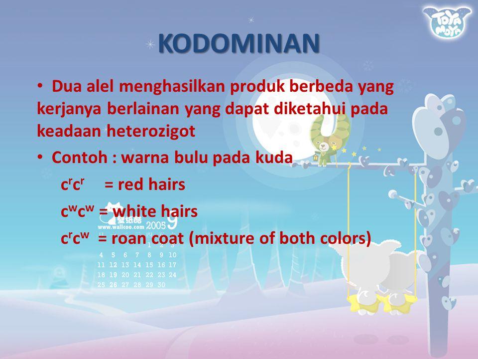 KODOMINAN Dua alel menghasilkan produk berbeda yang kerjanya berlainan yang dapat diketahui pada keadaan heterozigot.