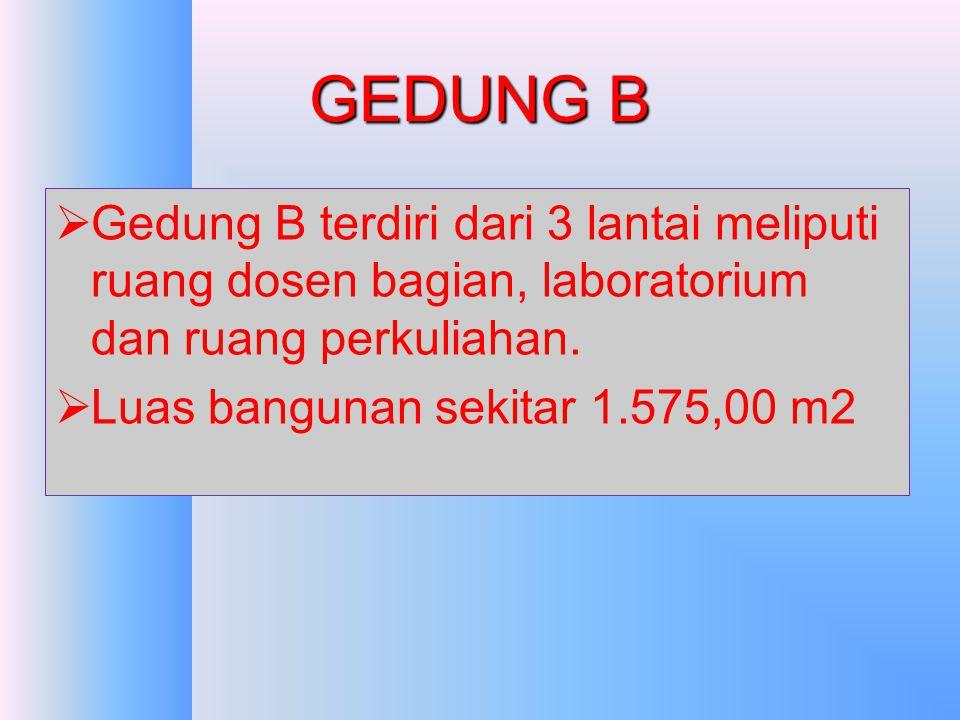 GEDUNG B Gedung B terdiri dari 3 lantai meliputi ruang dosen bagian, laboratorium dan ruang perkuliahan.