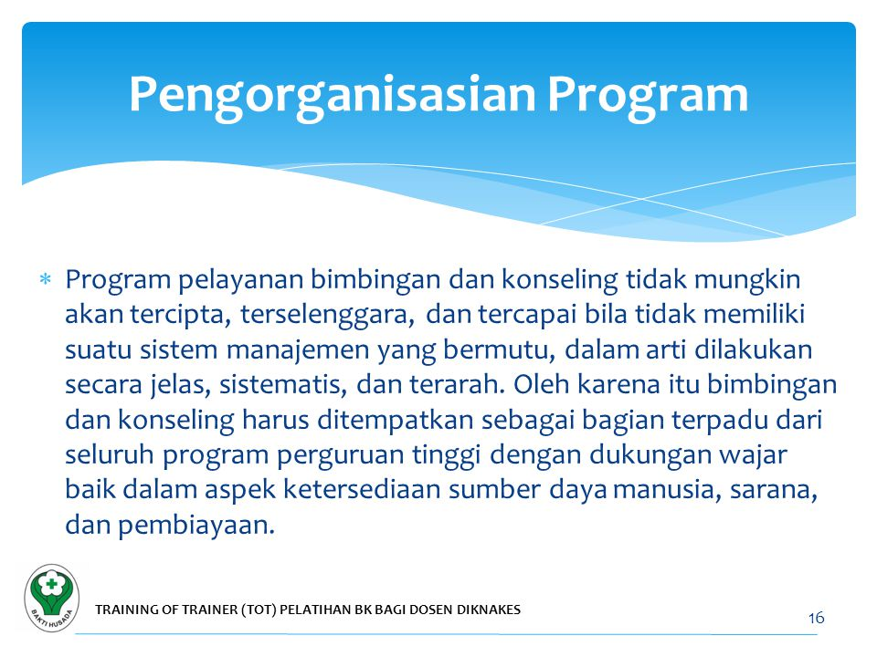 Pengorganisasian Program