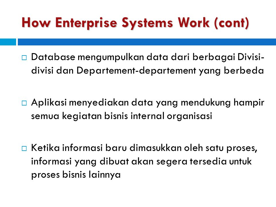 How Enterprise Systems Work (cont)