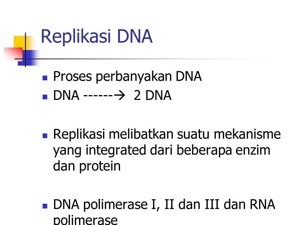 Replikasi DNA Proses perbanyakan DNA DNA ------ 2 DNA