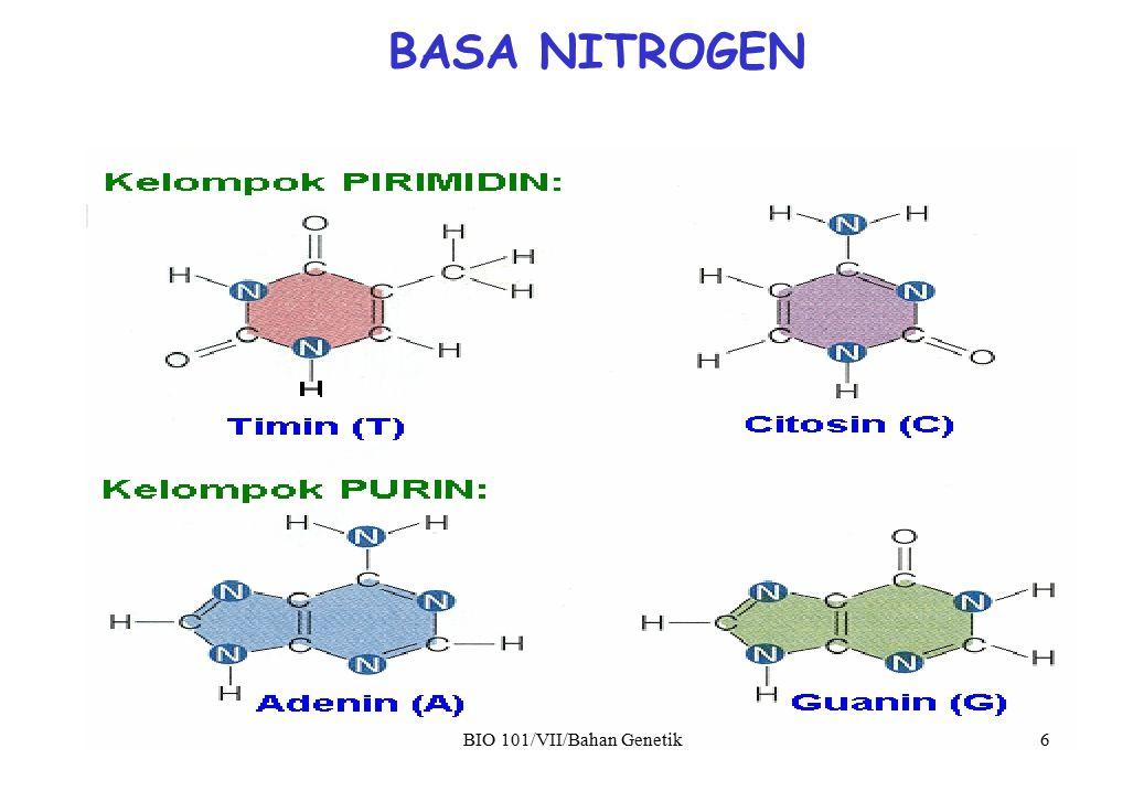 BASA NITROGEN BIO 101/VII/Bahan Genetik 6