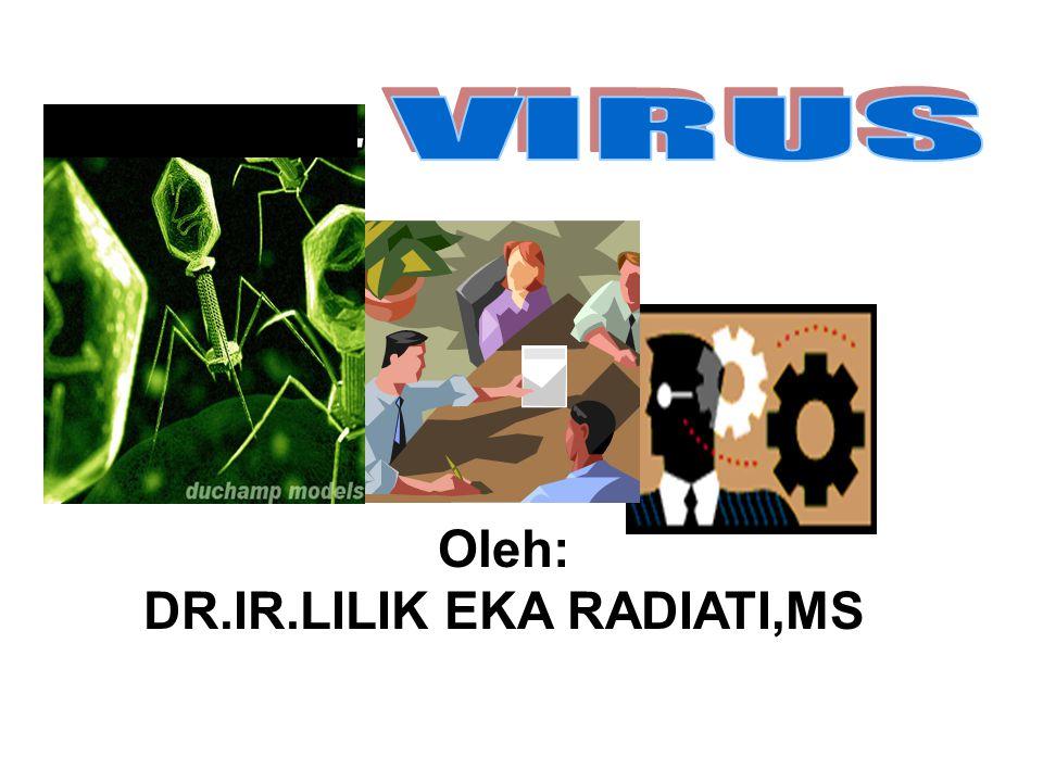 DR.IR.LILIK EKA RADIATI,MS