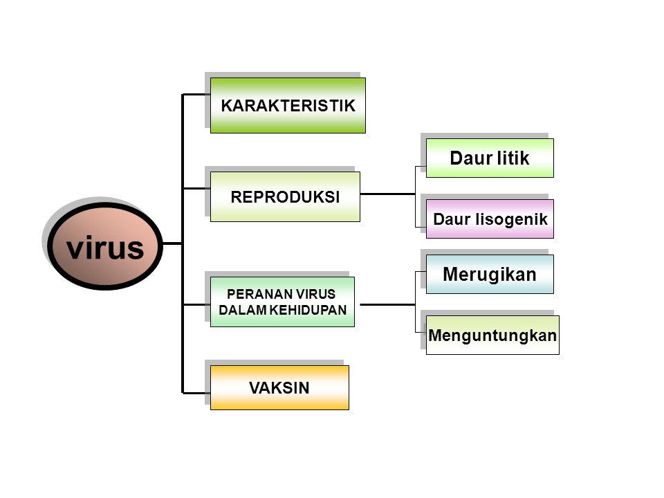 virus Daur litik Merugikan KARAKTERISTIK REPRODUKSI Daur lisogenik
