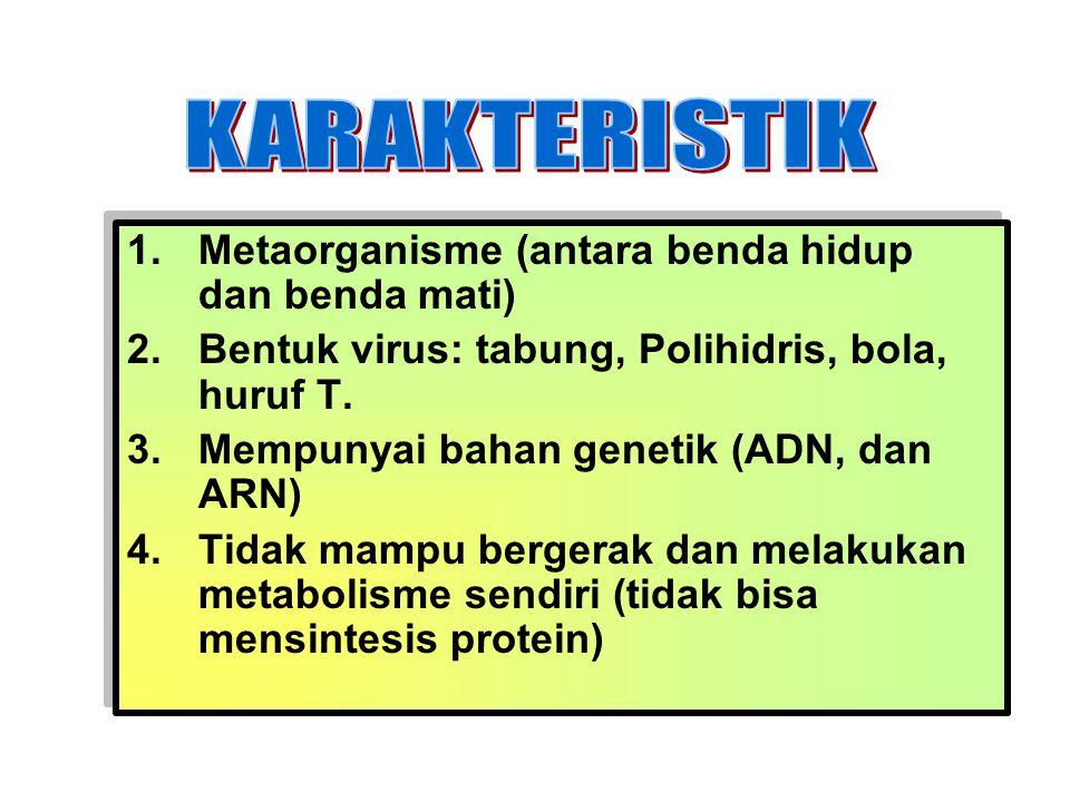 KARAKTERISTIK Metaorganisme (antara benda hidup dan benda mati)