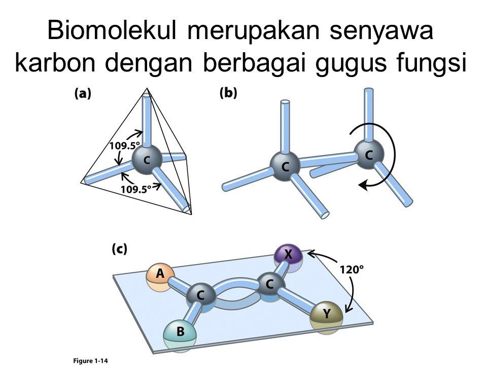 Biomolekul merupakan senyawa karbon dengan berbagai gugus fungsi