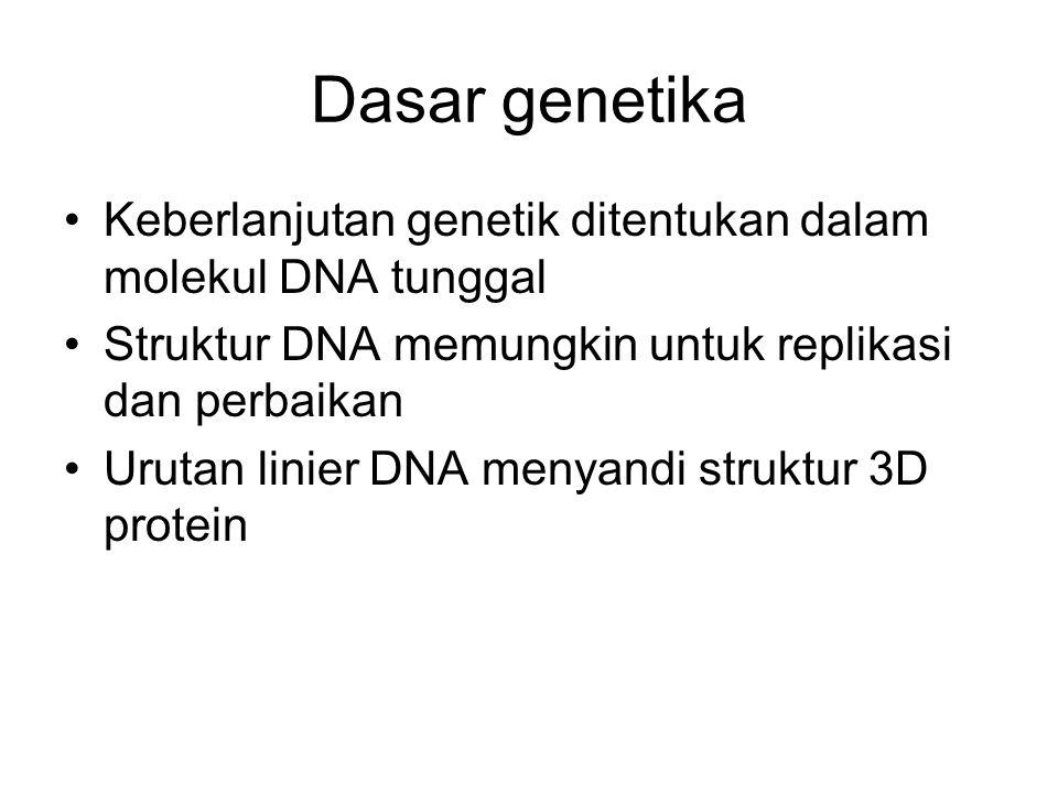 Dasar genetika Keberlanjutan genetik ditentukan dalam molekul DNA tunggal. Struktur DNA memungkin untuk replikasi dan perbaikan.