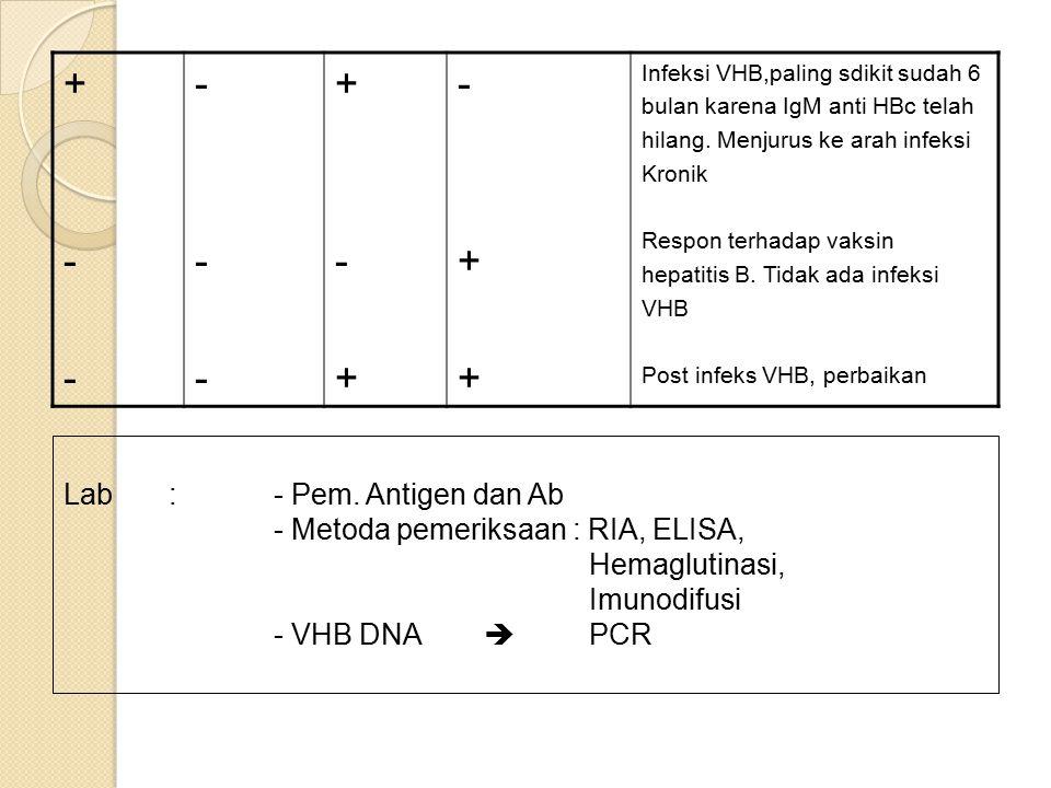 + - Lab : - Pem. Antigen dan Ab