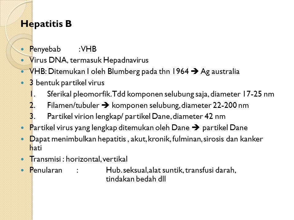 Hepatitis B Penyebab : VHB Virus DNA, termasuk Hepadnavirus