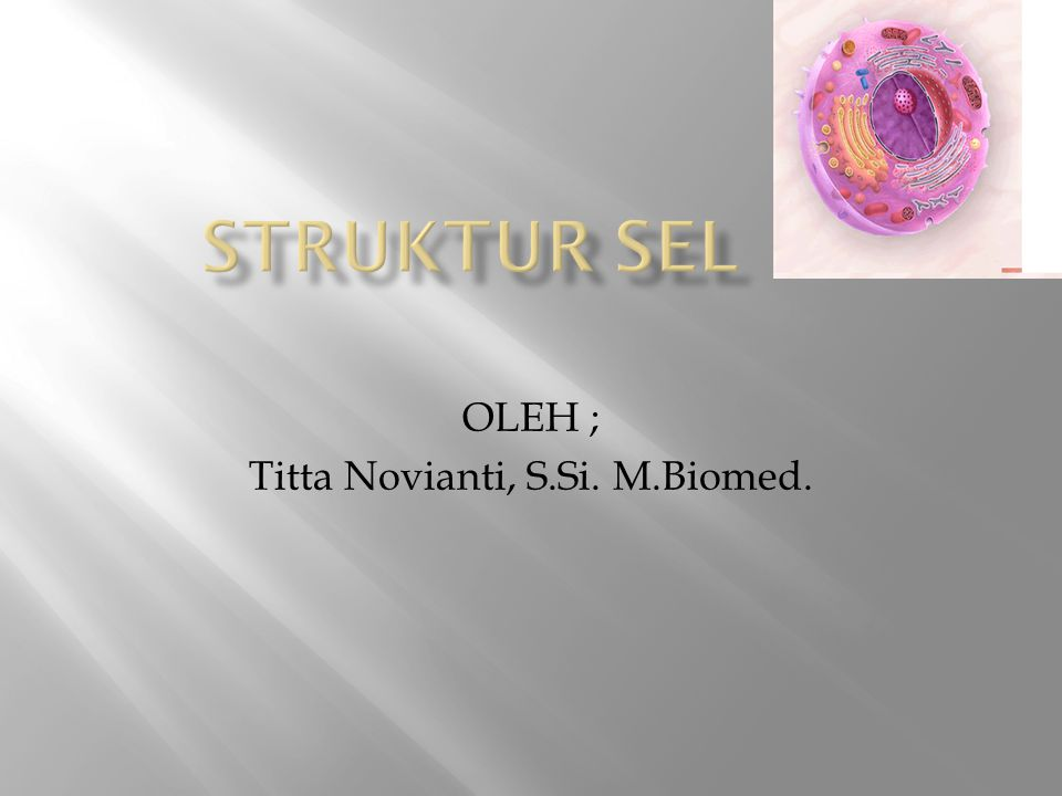 OLEH ; Titta Novianti, S.Si. M.Biomed.