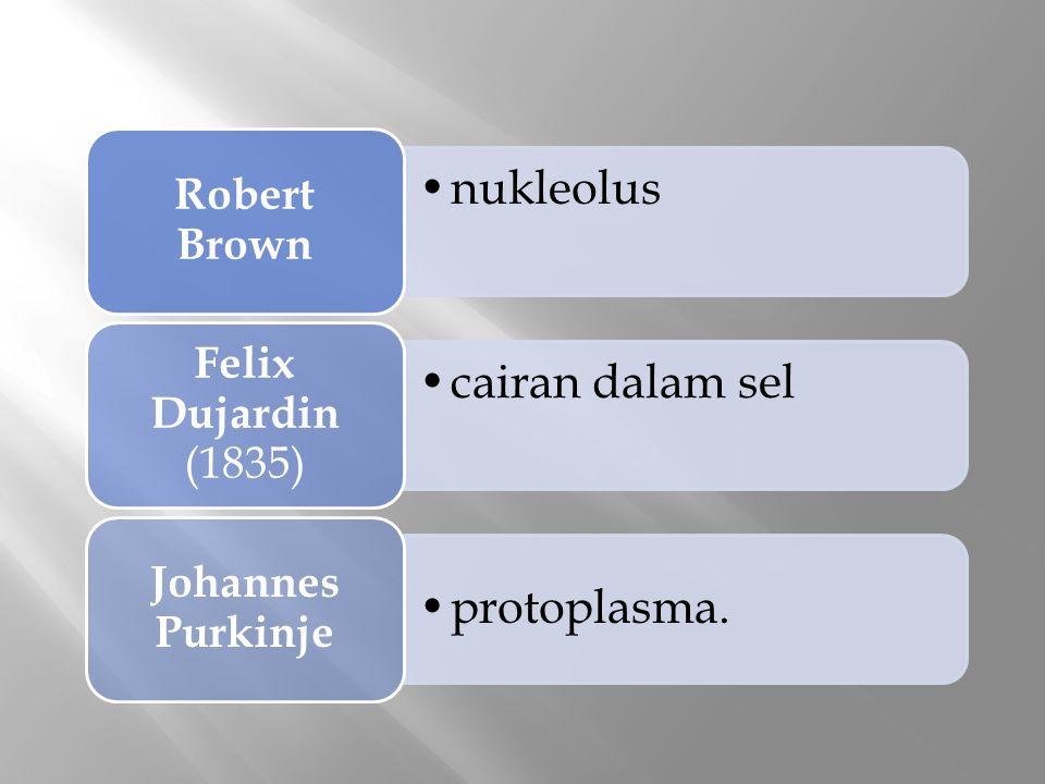 Robert Brown nukleolus Felix Dujardin (1835) cairan dalam sel Johannes Purkinje protoplasma.
