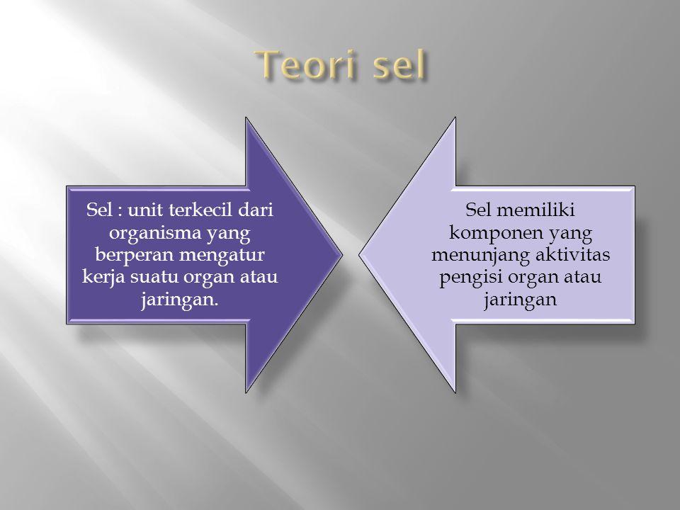 Teori sel Sel : unit terkecil dari organisma yang berperan mengatur kerja suatu organ atau jaringan.