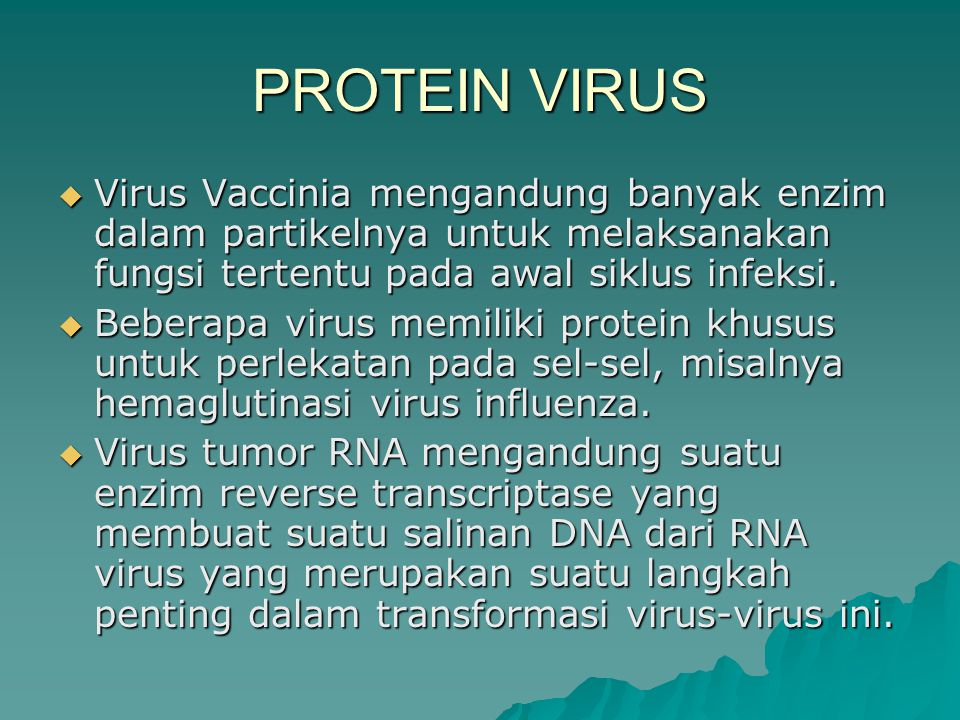 PROTEIN VIRUS Virus Vaccinia mengandung banyak enzim dalam partikelnya untuk melaksanakan fungsi tertentu pada awal siklus infeksi.