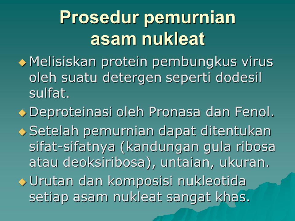 Prosedur pemurnian asam nukleat
