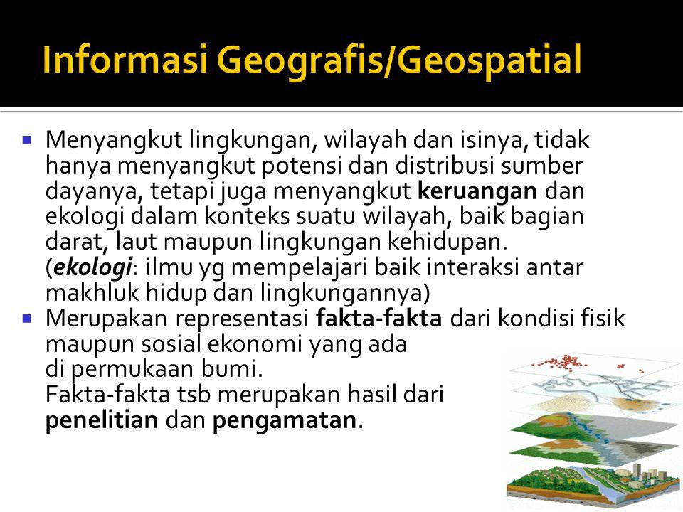 Informasi Geografis/Geospatial