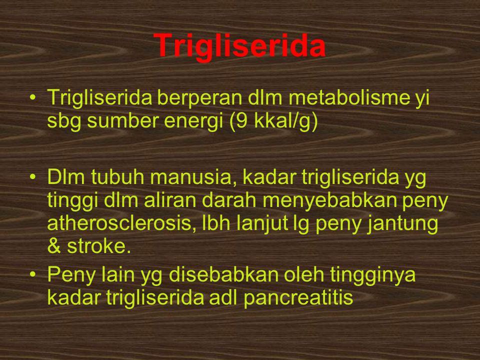 Trigliserida Trigliserida berperan dlm metabolisme yi sbg sumber energi (9 kkal/g)