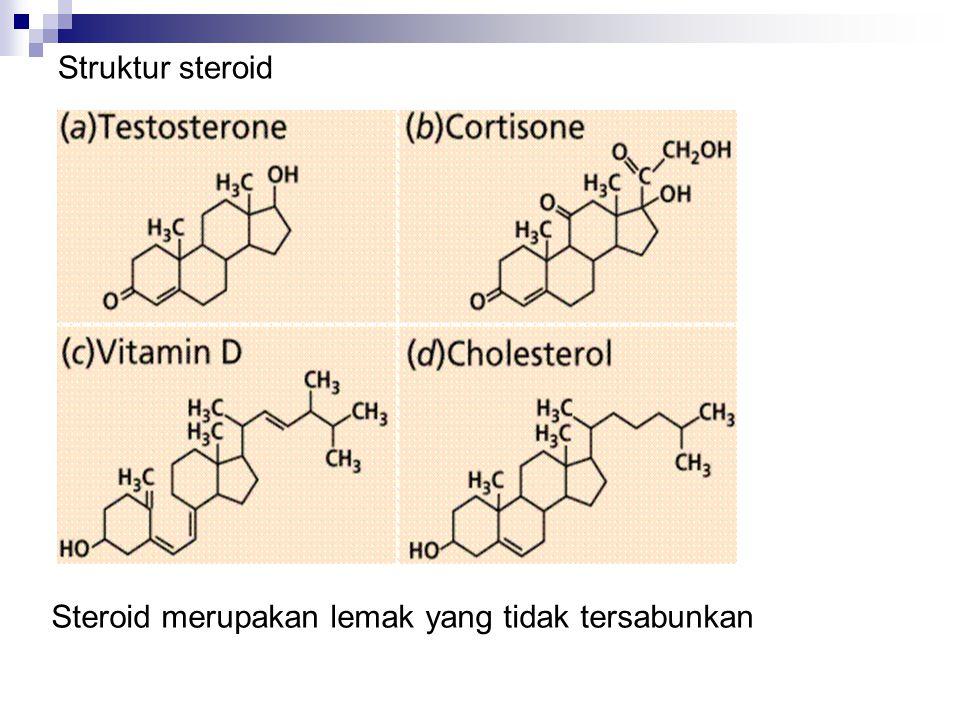 Struktur steroid Steroid merupakan lemak yang tidak tersabunkan