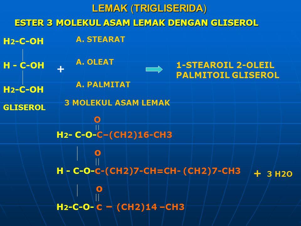ESTER 3 MOLEKUL ASAM LEMAK DENGAN GLISEROL