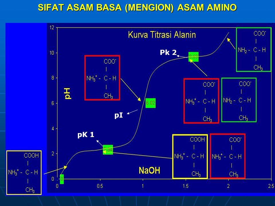 SIFAT ASAM BASA (MENGION) ASAM AMINO