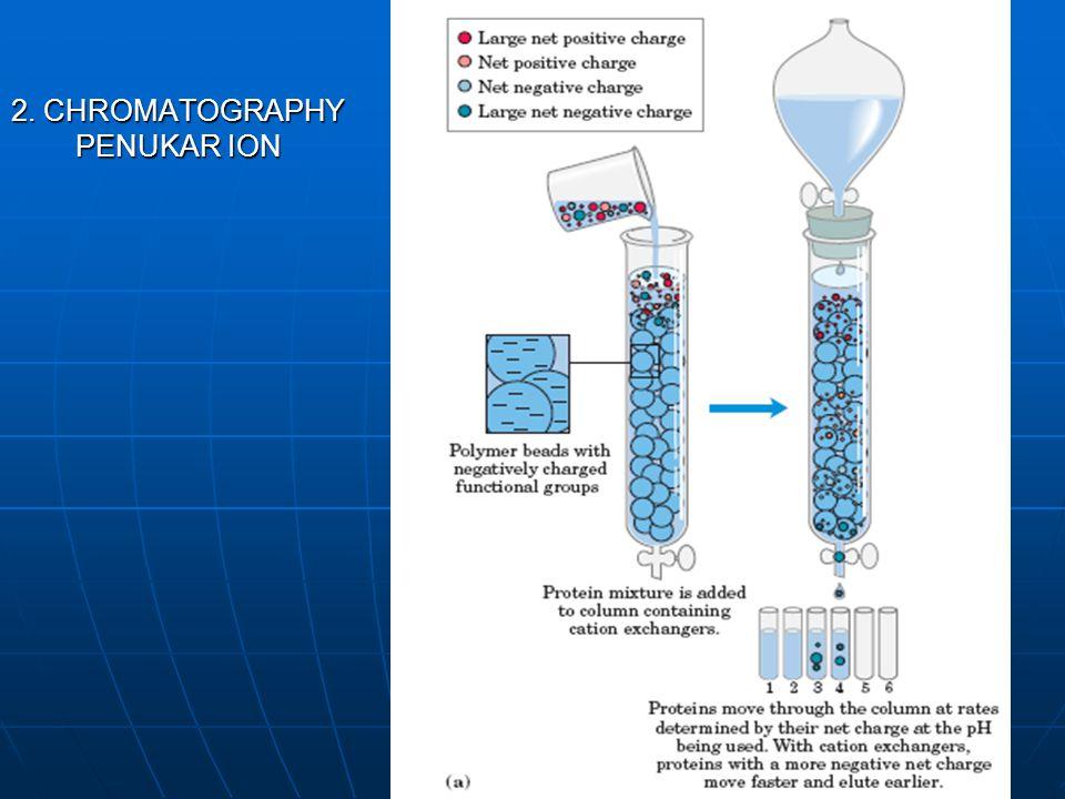 2. CHROMATOGRAPHY PENUKAR ION