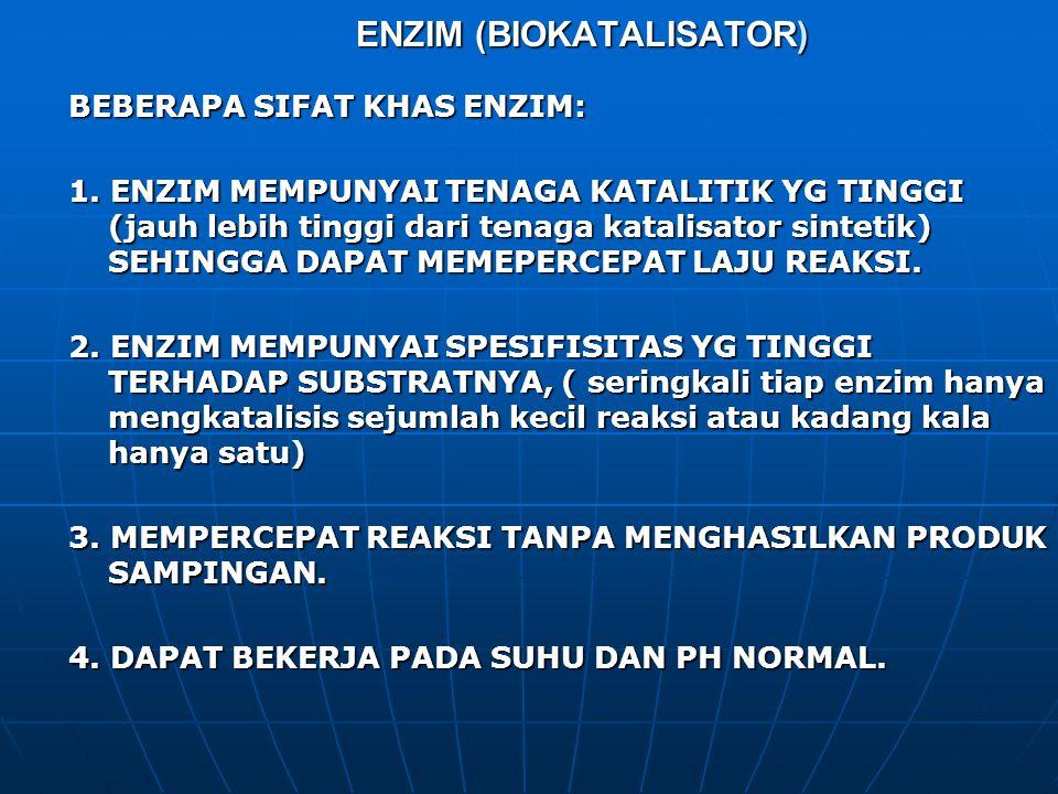 ENZIM (BIOKATALISATOR)
