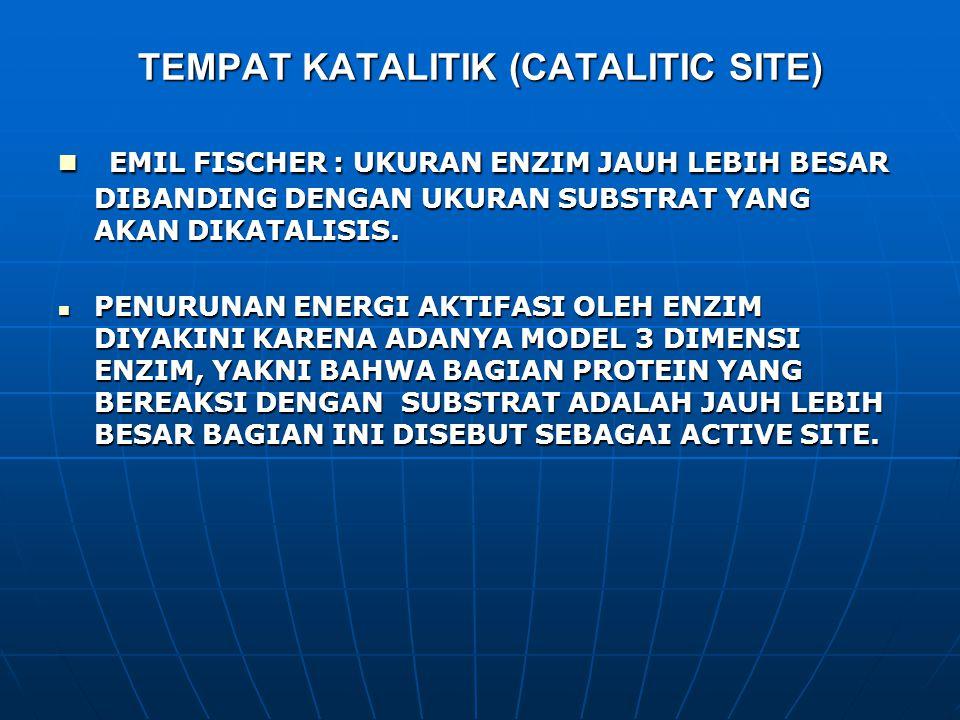 TEMPAT KATALITIK (CATALITIC SITE)