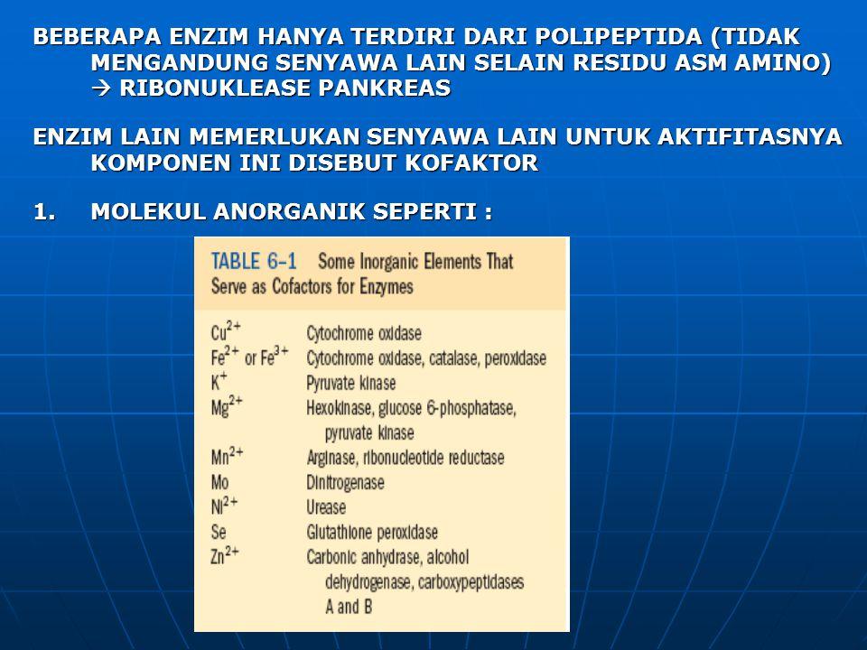 BEBERAPA ENZIM HANYA TERDIRI DARI POLIPEPTIDA (TIDAK MENGANDUNG SENYAWA LAIN SELAIN RESIDU ASM AMINO)  RIBONUKLEASE PANKREAS