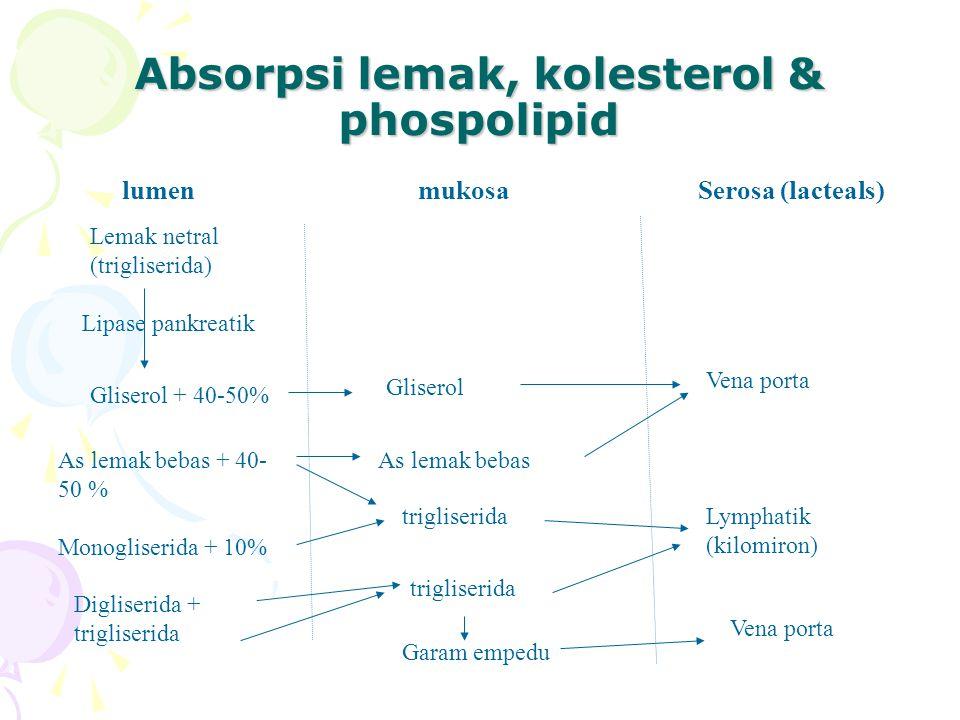 Absorpsi lemak, kolesterol & phospolipid