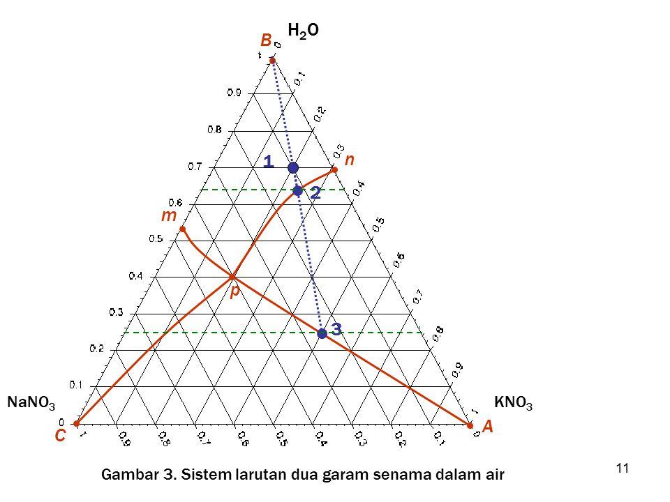 B H2O A KNO3 C NaNO3 p n m 1 2 3 Gambar 3. Sistem larutan dua garam senama dalam air