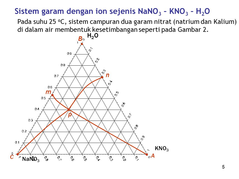 Sistem garam dengan ion sejenis NaNO3 – KNO3 – H2O