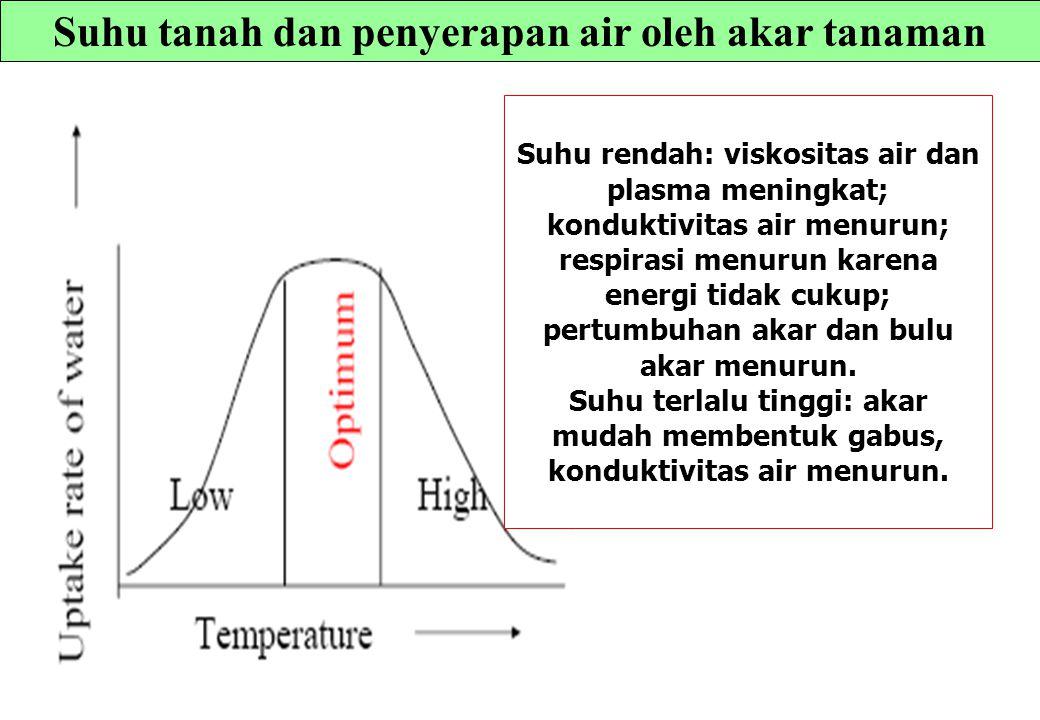 Suhu tanah dan penyerapan air oleh akar tanaman