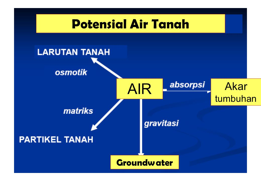 Potensial Air Tanah AIR Akar tumbuhan Groundwater