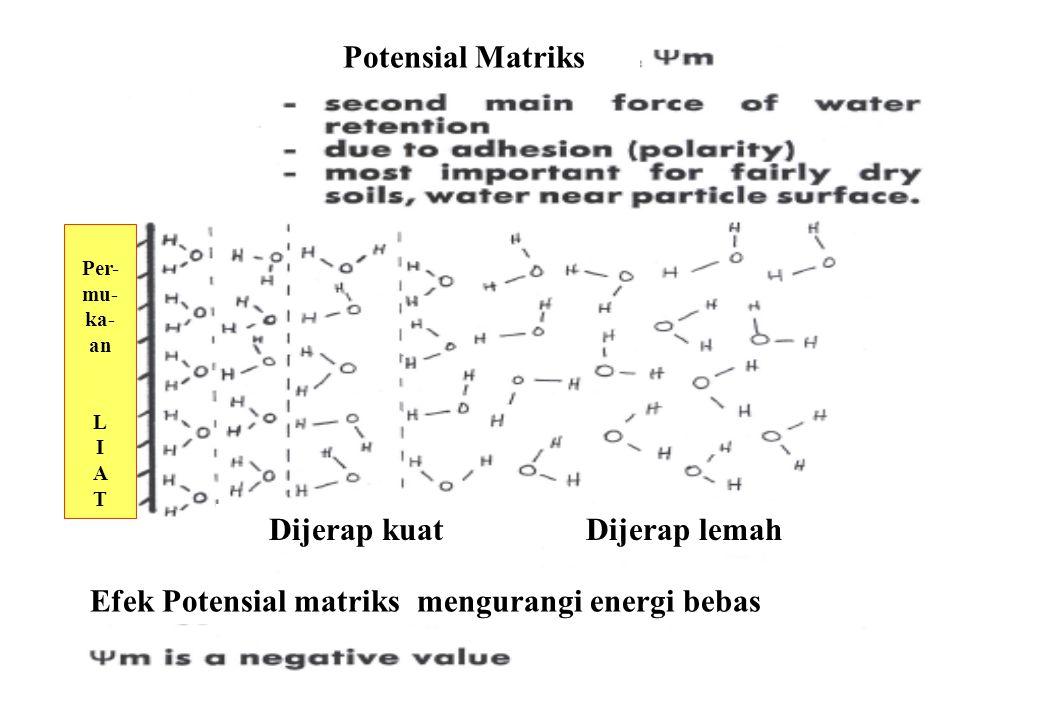 Potensial Matriks Dijerap kuat Dijerap lemah