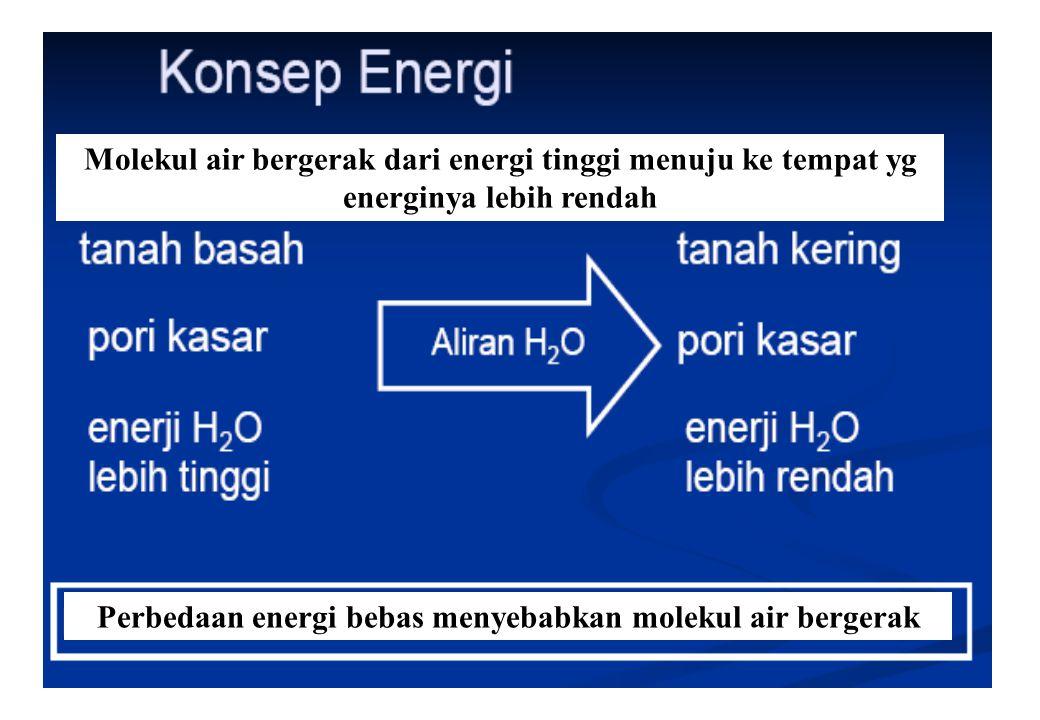 Perbedaan energi bebas menyebabkan molekul air bergerak