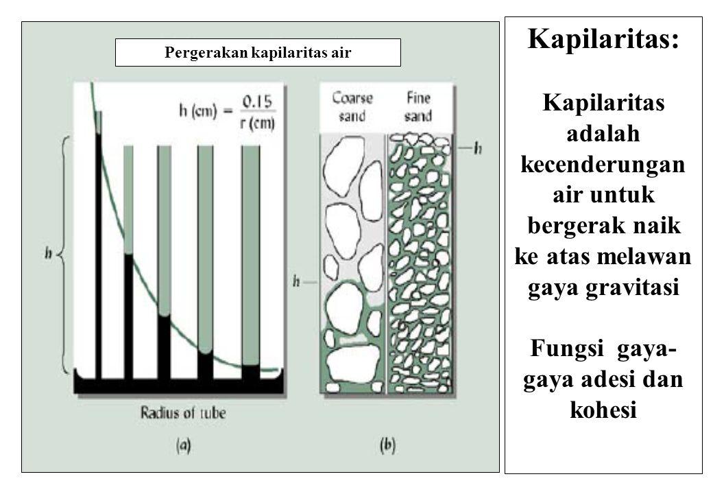 Fungsi gaya-gaya adesi dan kohesi Pergerakan kapilaritas air
