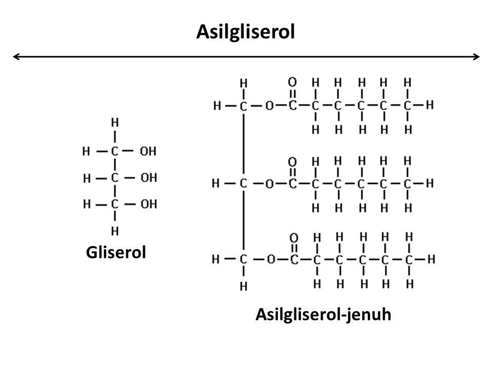 Asilgliserol Gliserol Asilgliserol-jenuh