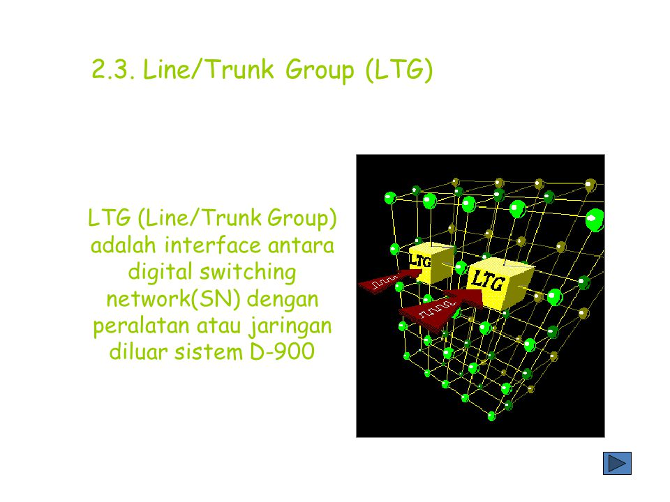 2.3. Line/Trunk Group (LTG)